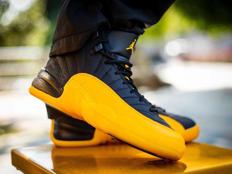 Air Jordan 12 Black University Gold On-Feet