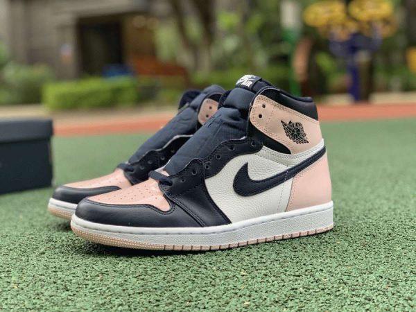 Air Jordan 1 High Atmosphere DD9335-641 sneaker