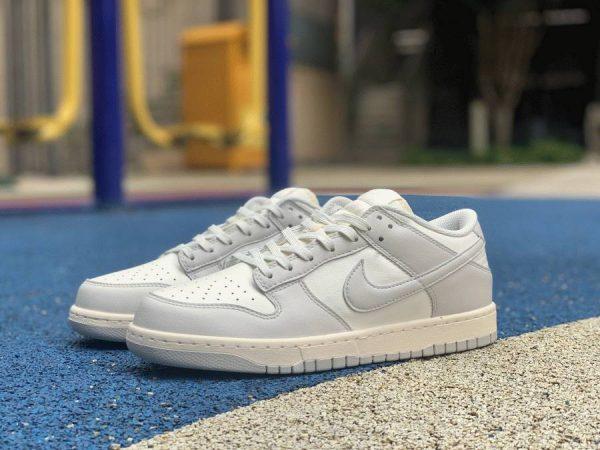 Nike Dunk Low Sail Light Bone DD1503-107 shoes